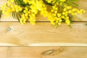 Mimosa su sfondo di legno