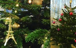 Natarom Marketing olfactif vous souhaite un joyeux Noël !