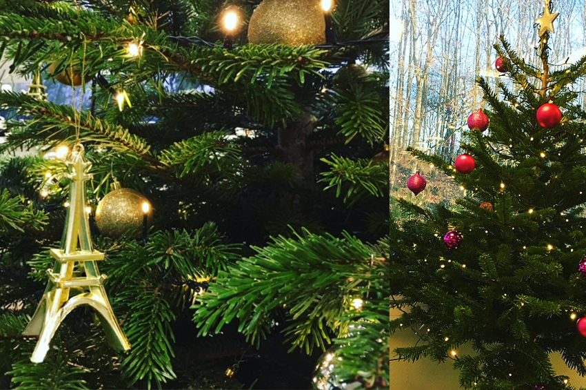 Joyeux Noel Souhaite.Natarom Marketing Olfactif Vous Souhaite Un Joyeux Noel