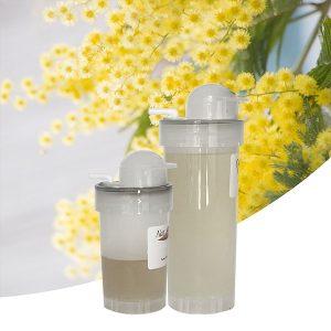 Parfum Mimosa muguet