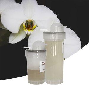 Parfum Orchidée blanche