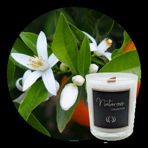 Bougie Parfumée 180g - Fleur d'Oranger