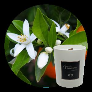 Bougie Parfumée Mat 150g - Fleur d'Oranger