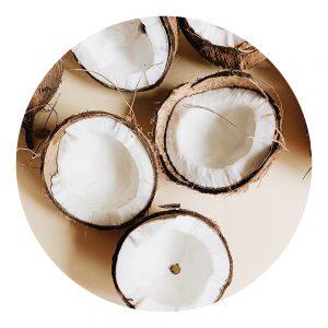 Parfum Kiwi coco vanille