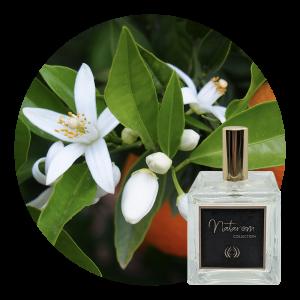 Spray d'ambiance 100 ml - Fleur d'Oranger
