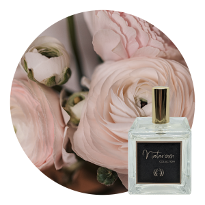 Spray d'ambiance 100 ml - Jardins de Carthage